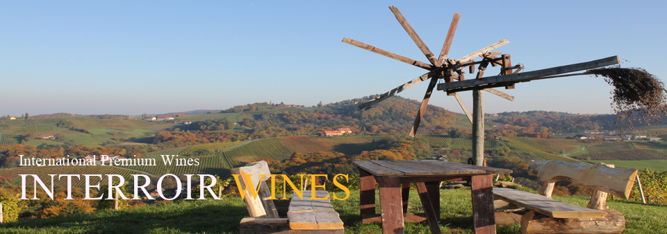 vineyard_steiermark2.jpg